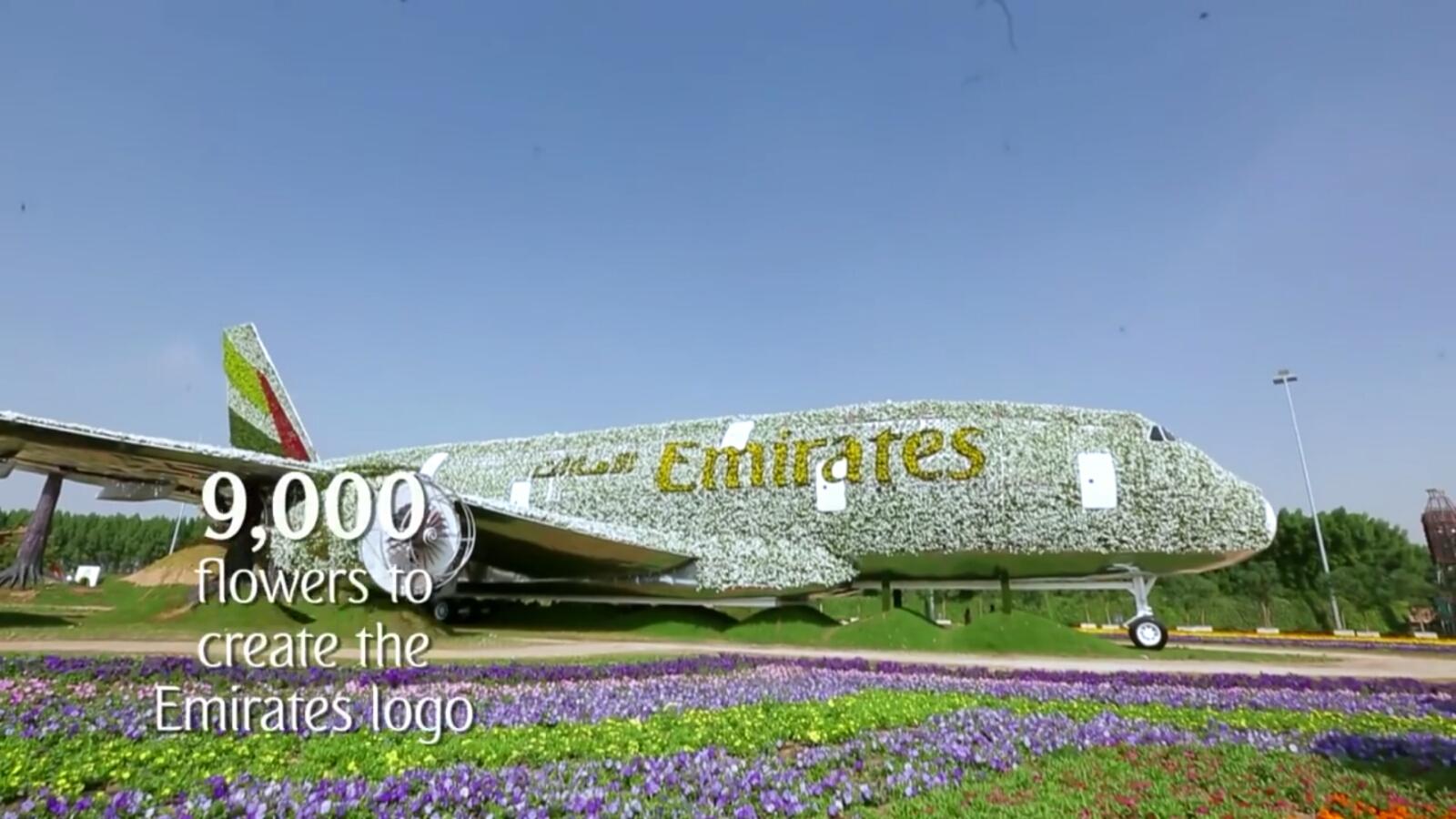 Pesawat Emirates A380 Terbuat Dari Bunga di Dubai Miracle Garden